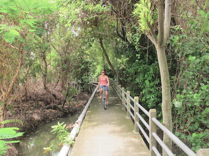 På sykkeltur gjennom jungelen - bare en halvtimes kjøretur unna Bangkok ...