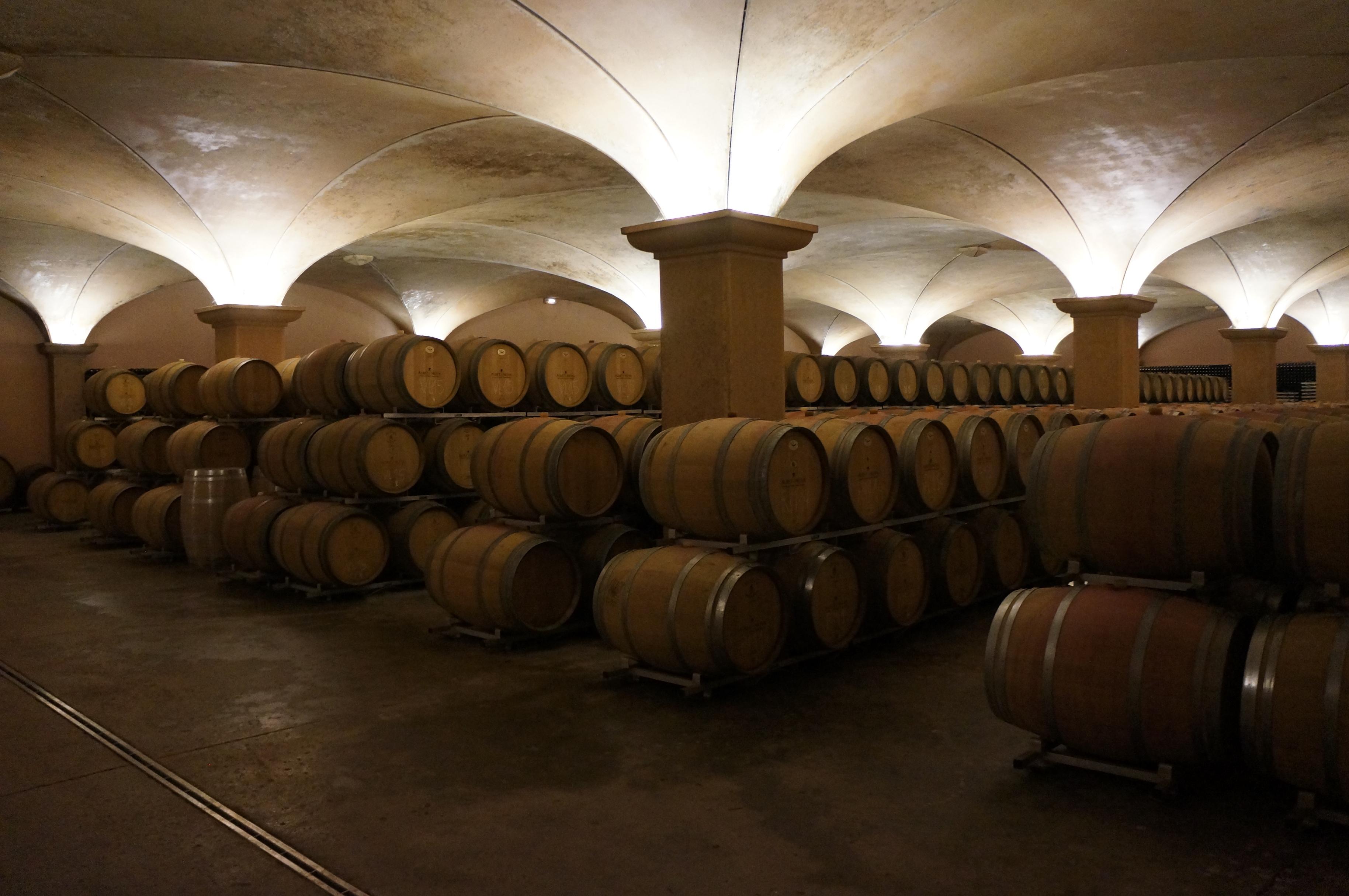 segway_økologisk_vingård_barcelona-10