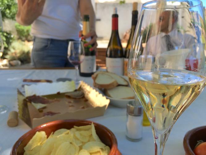 segway_økologisk_vingård_barcelona-22