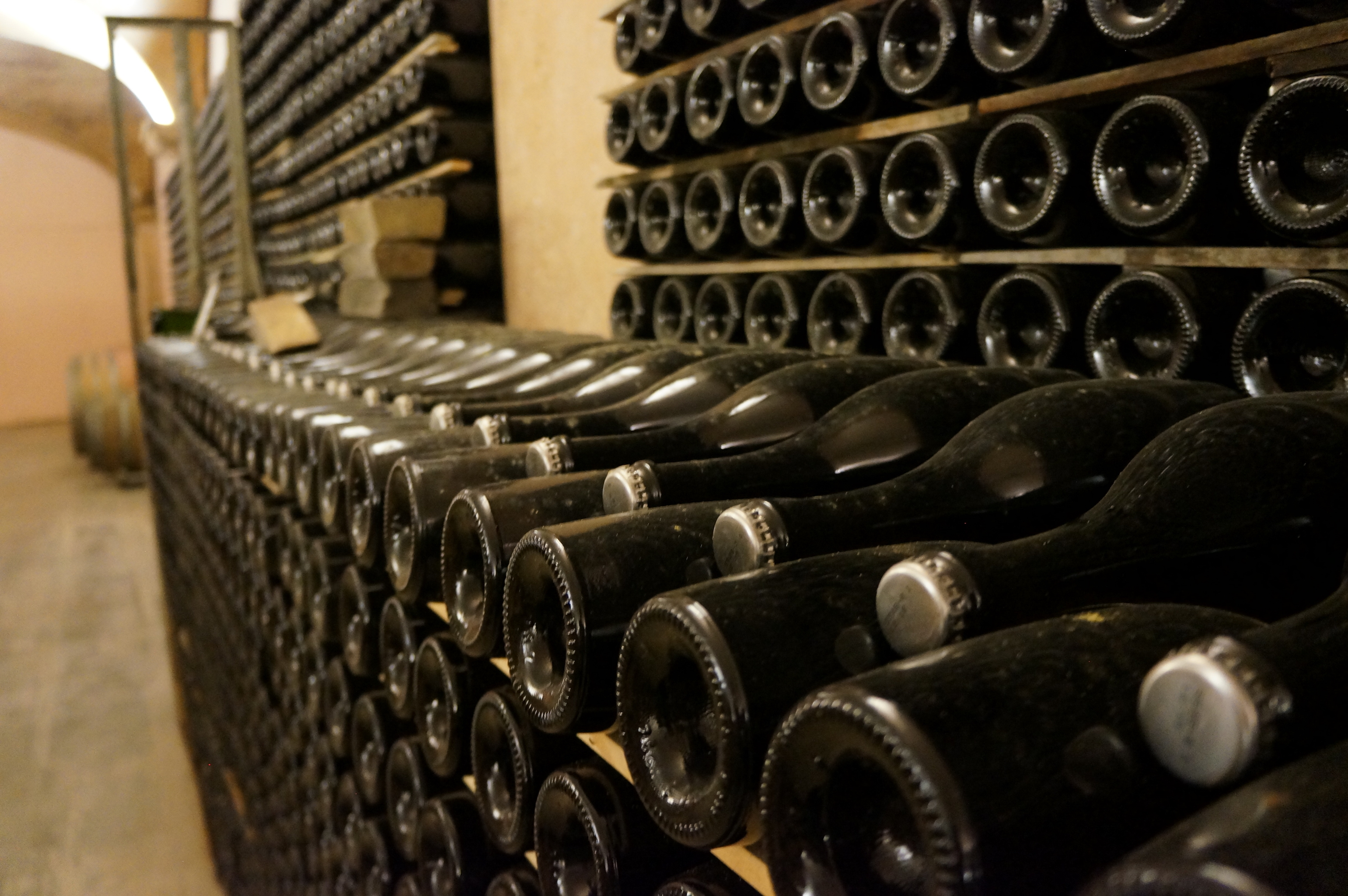 segway_økologisk_vingård_barcelona-13