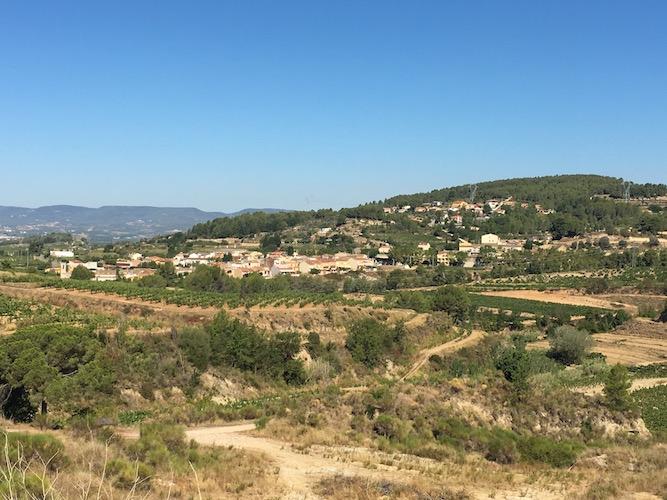 segway_økologisk_vingård_barcelona-16