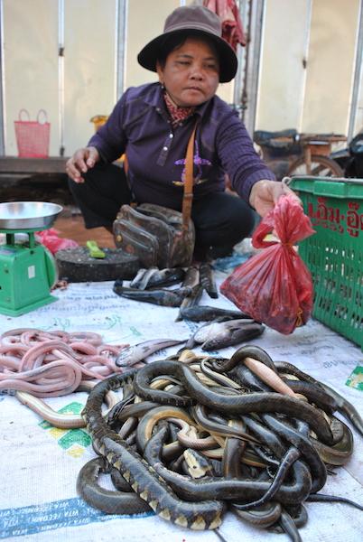 kambodsja_reisetips_shopping6