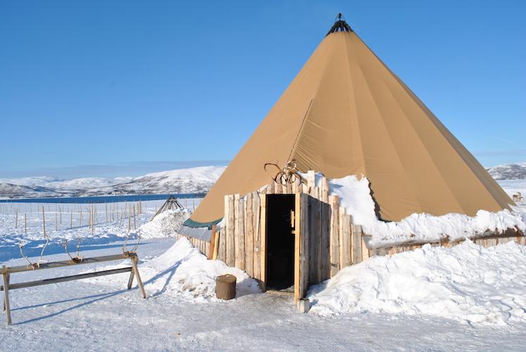 tromsø-reisetips-reinsdyr13