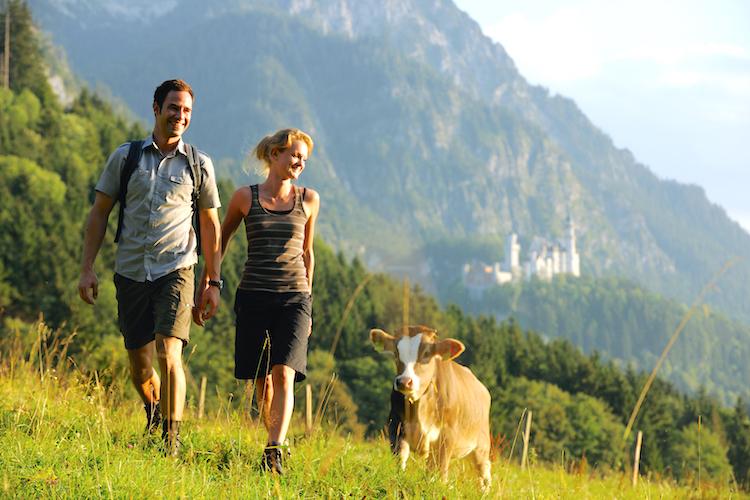 Neste stopp: Naturskjønne omgivelser ved Alpene! Bildet er lånt fra Füssens turistkontor.