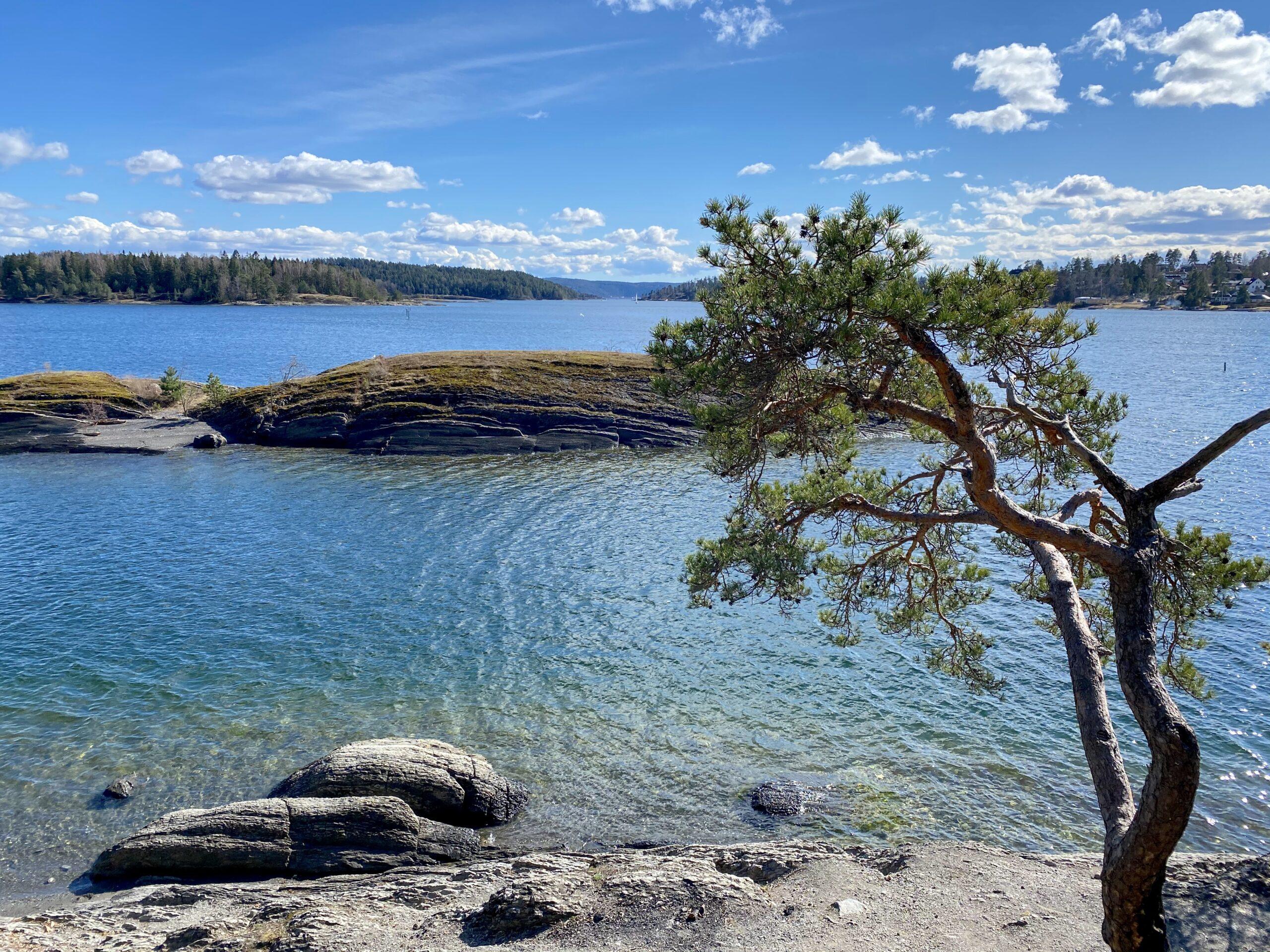 Kalvøya i Sandvika